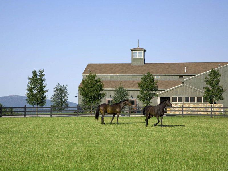 Horse Properties Farms Ranches And Equestrian Estates
