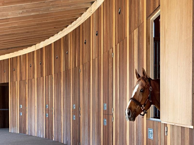 Essentials For The Modern Equestrian Center